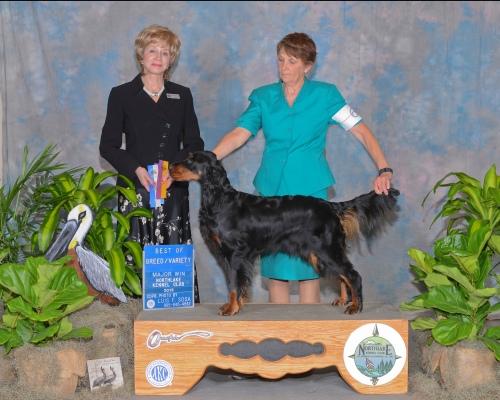 Lady Best of Breed Biloxi MS May 2015.jpg